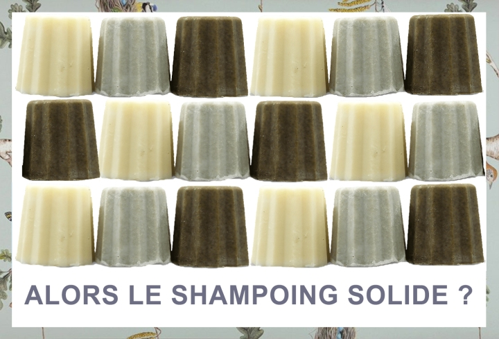TEST DU SHAMPOING SOLIDE